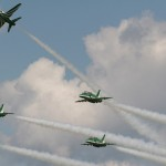 Royal Saudi Hawks