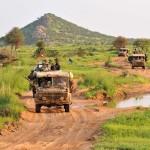Einsatzfahrzeuge vom Typ Puch G SOF Sandviper