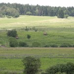 Panzerzug bei der Sicherung der Ortschaft Kühbach © Doppeladler.com