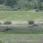 Die Leoparden nützen jedes bisschen Deckung aus. Ständig in Bewegung bleiben - denn der Feind hat Panzerabwehrwaffen © Doppeladler.com
