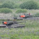 Auf den vorrückenden Panzern sind die Fliegererkennungstücher gut zu erkennen. Sie erleichtern der Luftnahunterstützung die Freund/Feinderkennung © Doppeladler.com