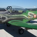 062 - Seit 2003 trägt die 3H-FG den Sonderanstrich Viper - und er bröckelt bereits.