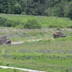 Doch die letzten Meter zur Minensperre müssen sich die Panzerpioniere mit ihren 12,7 mm MGs freikämpfen © Doppeladler.com