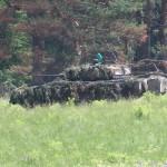 Die Schützenpanzer nutzen die Deckung des Waldrands und des Waldes selbst. Mit ihren 30 mm Maschinenkanonen halten sie den Gegner nieder © Doppeladler.com