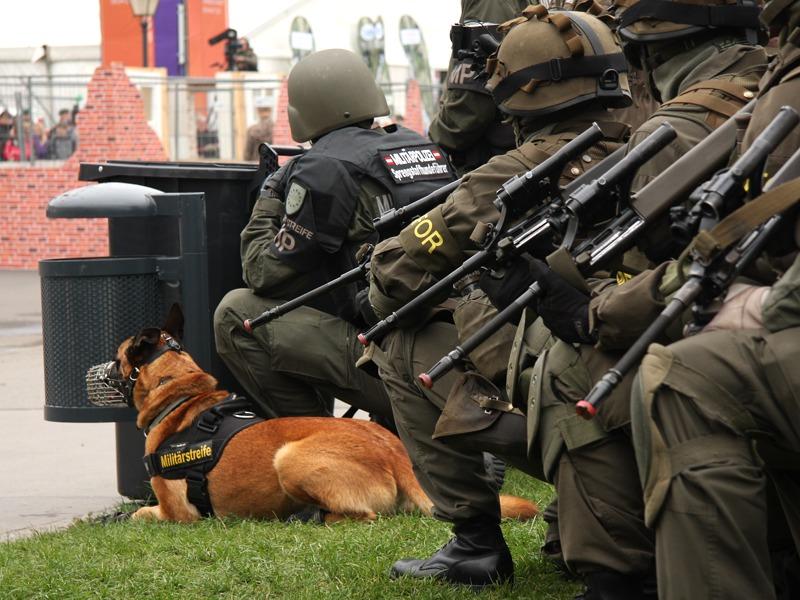 Kurz vor dem Befehl zum Vorrücken. Auch ein Sprengstoff-Spürhund der Militärpolizei ist Teil der Aktion © Doppeladler.com