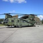 Boeing CH-47 Chinook vor einem Shelter der Aalborg Air Base © FLVFOT