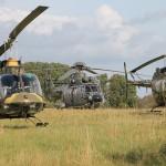 Bell OH-58B Kiowas und Cougar © MzHSSt