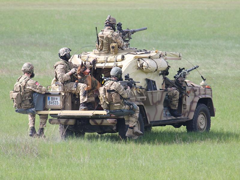 Die Sandvipern rücken weiter vor und halten mit je zwei MGs und zwei Sturmgewehren den Genger nieder