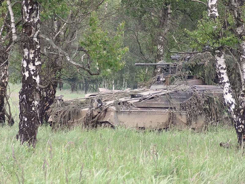 Die Panzerspitzen der MFOR warten schon auf die Bilder © Doppeladler.com
