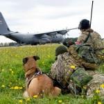 C-130 aus Dänemark bei einer Luftlandung © FLVFOT
