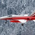 Auch die Northrop F-5E Tiger II der Patrouille Suisse waren im Einsatz © doncorleone117