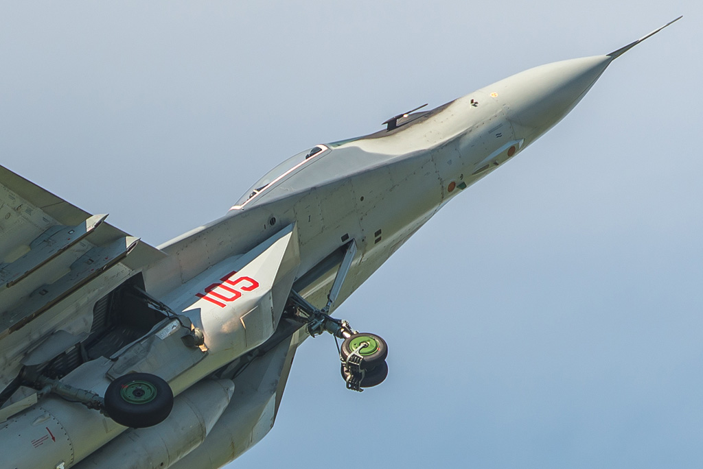 HS2 - MiG-29A close up © Hilco Schigt