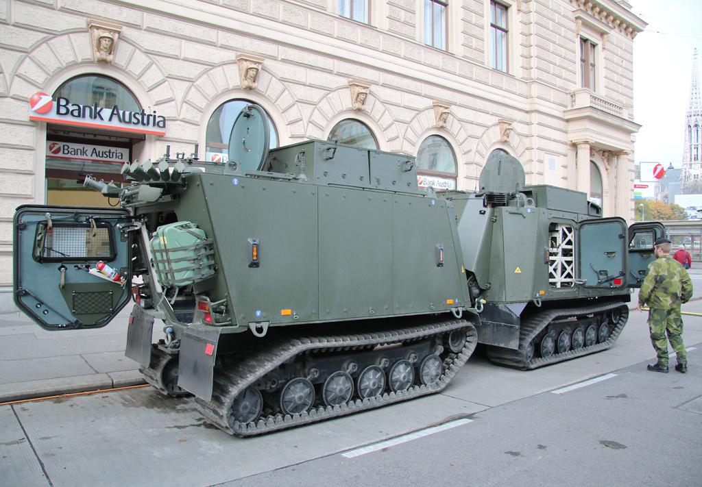 Auch die österreichischen Fahrzeuge werden vom Typ BvS10 MkIIB sein © Doppeladler.com