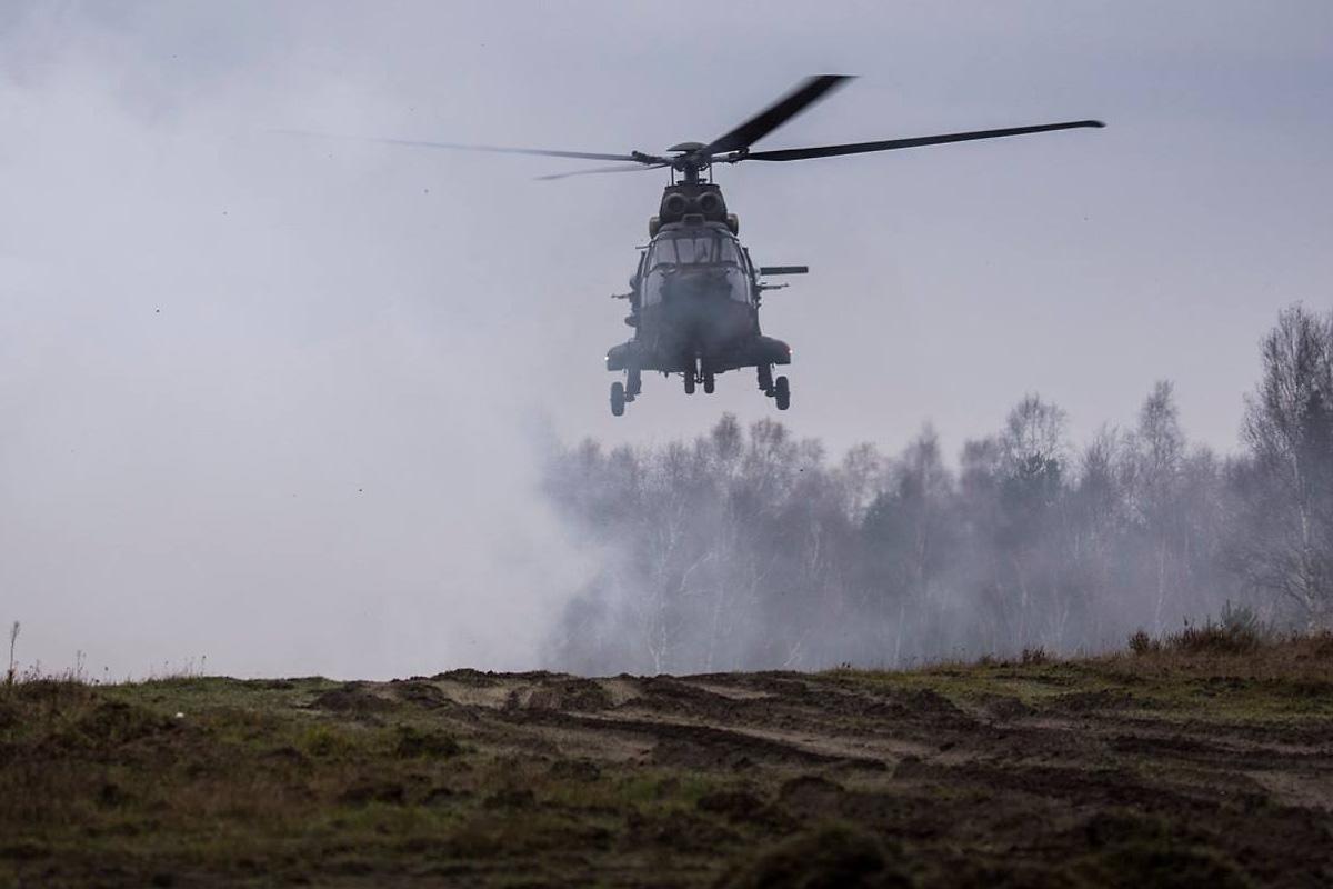 Luftunterstützung durch Puma © Bundesheer