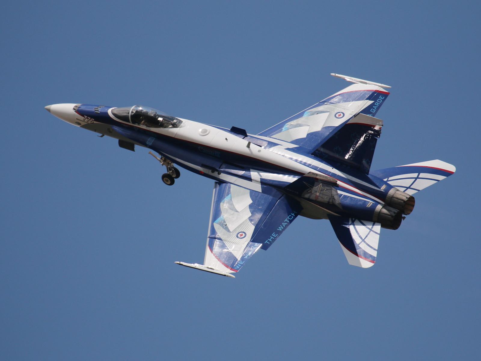 Diese Hornet gehört zur 433 Tactical Fighter Squadron © Doppeladler.com