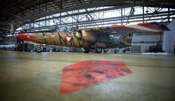 """Enthüllung der """"Golden Tiger"""" bei der Fly-Out-Zeremonie am 11.12.2020 © Bundesheer"""