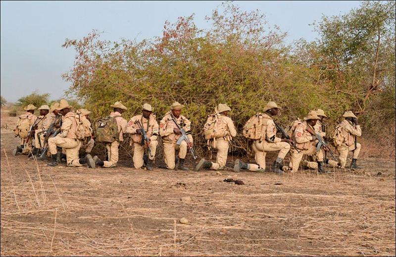 Einheiten aus Burkina Faso © US Army